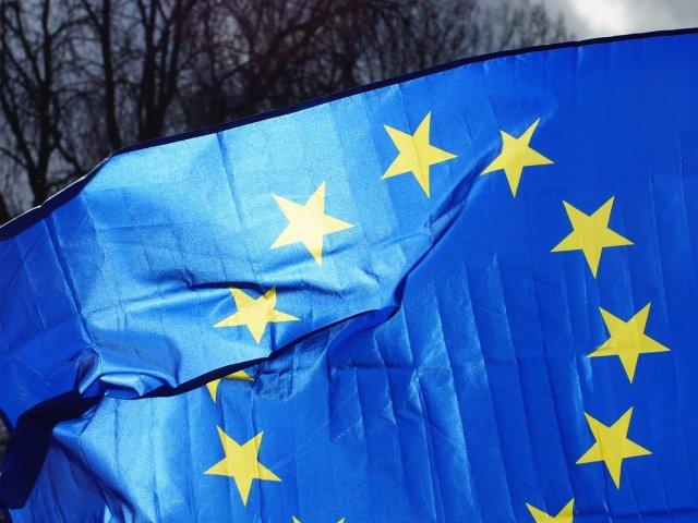 Pulse of Europe Darmstadt, Europaflagge