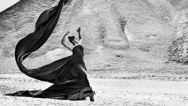 Flamencos del Mundo