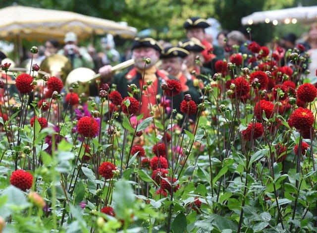 Das F├╝rstliche Gartenfest Schloss Wolfsgarten_Marc Strohfeldt_4.jpg
