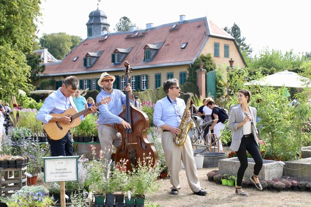 Das F├╝rstliche Gartenfest Schloss Wolfsgarten_Carina Jirsch.jpg