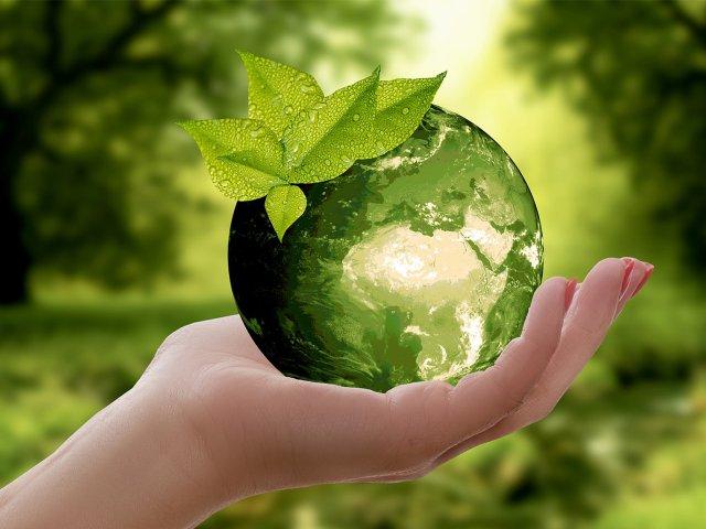 Umweltaktionstage