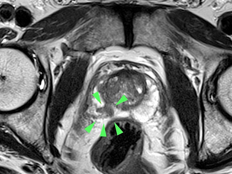 Radiologie Darmstadt