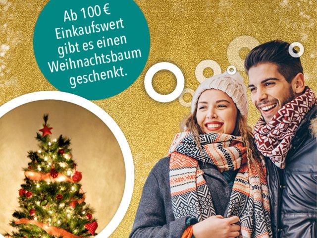 1000 Weihnachtsbäume geschenkt