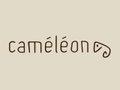 Caméléon Darmstadt Logo