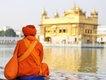 Indien_Violo_6_web.jpg