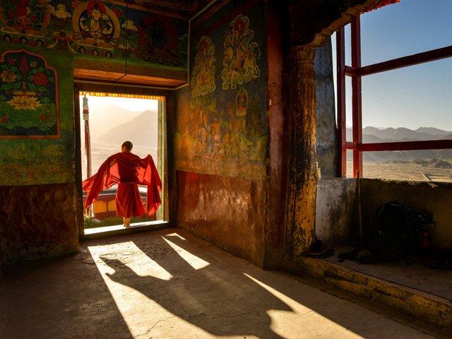 Ladakh_Violo_3_web.jpg