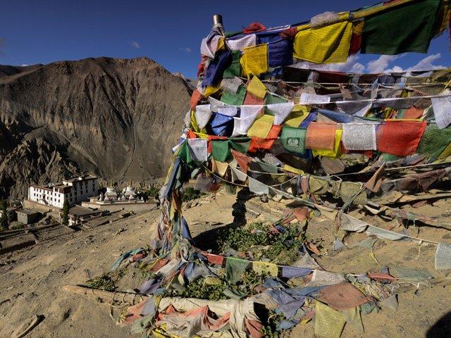 Ladakh_Violo_6_web.jpg