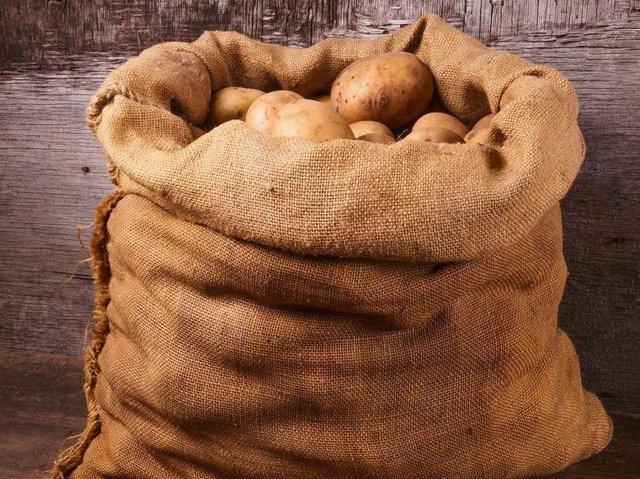 Potatoes From A Sack Lying On Wooden Boards