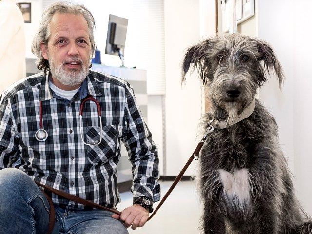 Tierarzt Martin Kniese mit seinem Irischen Wolfshund Elza