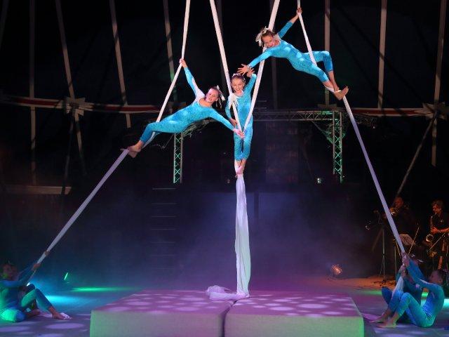 Zirkus Waldoni
