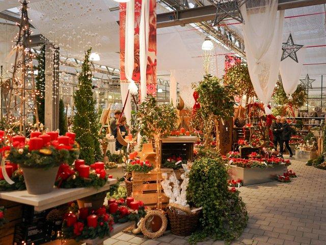 Mühltaler Gartenmarkt